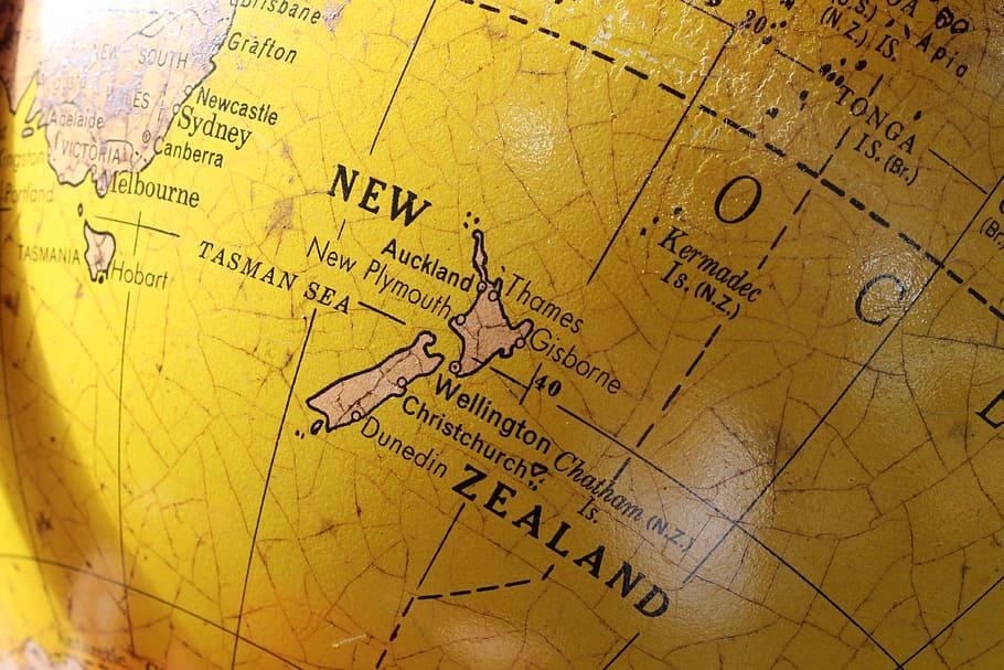 New Zealand's best Web Scraping Developers